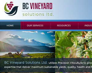 BC Vineyard Solutions Ltd.