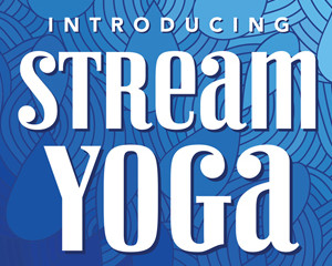 Stream Yoga at the Joint